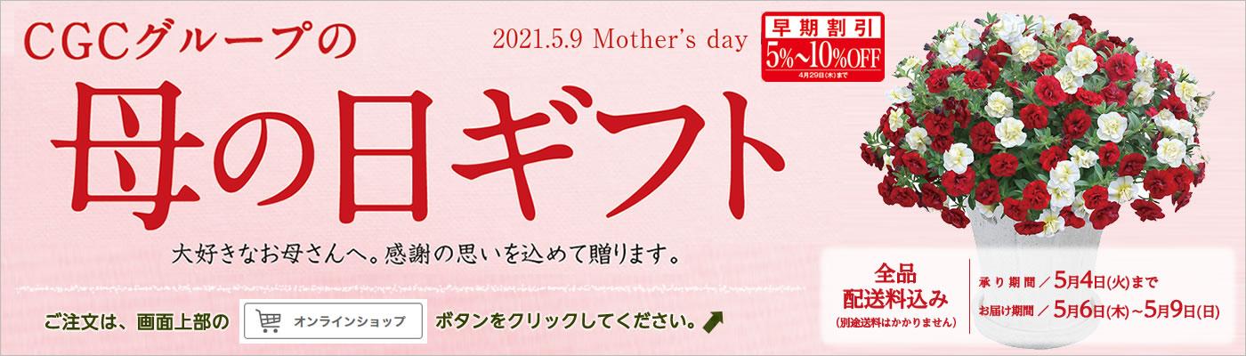 母の日(早期予約)